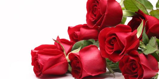 開店祝いなどの祝花